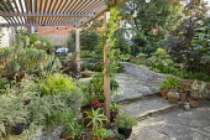 Urban courtyard garden, wooden pergola, Phalaris arundinacea var. picta, Euphorbia x martinii
