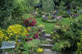 View over colourful scented garden, circular box-edged border island bed, lavender, roses, fountain
