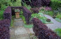 Terracotta pot in prunus hedge enclosure