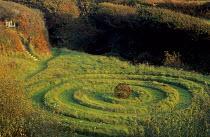 Earthwork lawn spiral