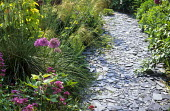 Slate chippings path, Stipa gigantea