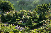 Parterre with box hedges and topiary