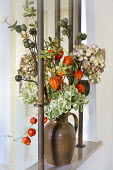 Chinese lanterns and hydrangea seedheads in vase