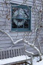 Christmas wreath in window, wooden bench