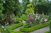 Rose and topiary gardens, box-edged parterre