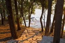 View through holm oak trees to seashore, stone path