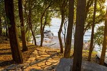 View through oak trees, Quercus ilex, to seashore, stone path