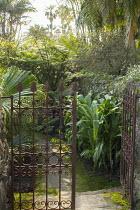 Metal gate, path through exotic garden