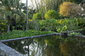 Formal stone-edged pool in exotic garden