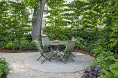 Wooden table and chairs on circular patio in London front garden, hornbeam hedge, Cor-Ten steel border edging
