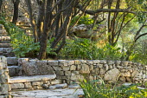 Dry-stone wall, stone steps, acanthus, euphorbia