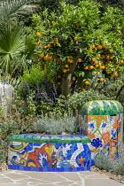 Colourful mosaic built-in bench, Salvia leucantha, Helichrysum italicum, Salvia africana-lutea, Citrus sinensis