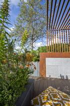 Metal pergola screen over contemporary roof terrace, cushion, Echium webbii, Geum 'Totally Tangerine', Quercus suber