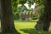 Oak trees in lawn in front of house, brick steps, yew domes