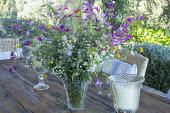 Cut wildflower stems in glass vase on table, Gladiolus italicus