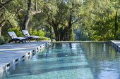 Chairs on terrace by formal swimming pool, olive trees