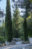 Cupressus sempervirens in stone raised beds, wooden table and chairs on stone terrace