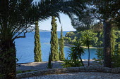 View from mediterranean terrace towards sea, Cupressus sempervirens