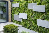 Italian basalt stone panels mounted over living green vertical wall