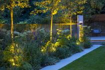 Mowing strip, Selinum wallichianum, Trachelospermum jasminoides climbing on wooden fence, Amelanchier 'Robin Hill', water wall, Erigeron karvinskianus