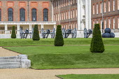 Row of yew topiary and cannons in formal lawns in front of Royal Hospital