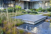 Square deck overhanging formal raised pebble pool, Carex testacea groundcover, clipped yew mounds