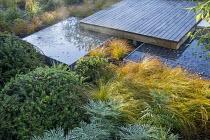 Square deck overhanging formal raised pebble pools, clipped yew mounds, Mahonia eurybracteata subsp. ganpinensis 'Soft Caress', Carex testacea