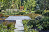 Stone path leading across border to square deck overhanging formal raised pebble pools, clipped yew domes, Carex testacea, Hakonechloa macra