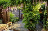 Town garden, table and chairs, willow screens, decking, wisteria
