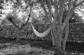 Hammock suspended between two trees by dry-stone wall