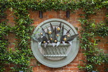 Contemporary ornament on brick wall, Trachelospermum jasminoides climbing on trellis