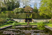 Formal water lily pond, tulips in pots, wooden bench, yew hedges, stone walls, steps