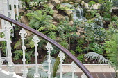 Waterfall in Temperate House, rockery, staircase