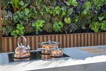 Copper kettle and pans on outdoor cooker, outdoor kitchen, living green vertical wall, nasturtiums, Lactuca sativa 'Lollo Rossa', Beta vulgaris subsp. cicla var. flavescens 'Bright Lights'