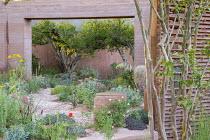 Rammed earth archway, Papaver rhoeas, Trifolium incarnatum, Euphorbia rigida, Punica granatum, Lagerstroemia indica
