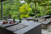Outdoor kitchen, grill and dining area, pleached mulberry espalier trees above wooden benches and table with tomatoes and herbs