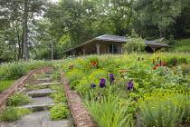 Brick-edged steps, Erigeron karvinskianus, Papaver orientale (Goliath Group) 'Beauty of Livermere' and 'Harlem', Iris 'Quechee', Euphorbia seguieriana subsp. niciciana