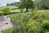 Terraced border, Papaver orientale (Goliath Group) 'Beauty of Livermere' and 'Harlem', Euphorbia oblongata, Euphorbia griffithii 'Dixter', Iris 'Quechee', Lupinus 'Masterpiece',  Euphorbia seguieriana...