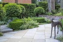 Prunus lusitanica 'Angustifolia' standard lollipop trees, low clipped box hedges, bronze dog statue, York stone paving, geraniums