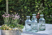 Alpine container and glass vases on wooden table
