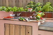 Outdoor kitchen and grill, herbs in raised bed, storage cupboards