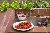 Outdoor sink, tomatoes and beetroot, herbs and strawberries in raised bed