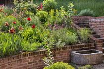 Raised brick border, Papaver orientale (Goliath Group) 'Beauty of Livermere' and 'Harlem', Euphorbia griffithii 'Dixter', Iris 'Quechee', Euphorbia seguieriana subsp. niciciana, stone trough