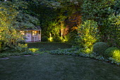 Lit shrubs at night, clipped Buxus sempervirens, camellia, amelanchier, ivy groundcover, view across astroturf lawn to summerhouse