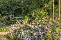 Table and chairs on patio, Rosa 'Gentle Hermione', Perovskia 'Blue Spire', Ammi majus, Centranthus ruber 'Albus', Salvia nemorosa 'Caradonna'