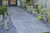 Stone path, Eryngium x zabelii 'Neptune's Gold', slate chippings