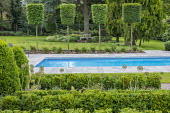 Swimming pool, box hedges, pleached hornbeam topiary