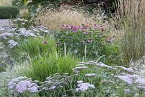 Echinacea purpurea 'Magnus', Deschampsia cespitosa, Calamagrostis x acutiflora 'Karl Foerster', Achillea 'Pretty Belinda', Pennisetum macrourum