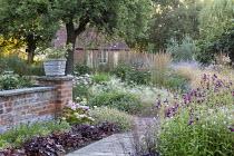 Penstemon 'Raven', Geranium 'Dreamland', Echinacea purpurea 'Magnus', Gaura lindheimeri, Hordeum jubatum, Heuchera 'Plum Pudding' edging path