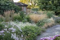 Achillea 'Pretty Belinda', Deschampsia cespitosa, Geranium 'Dreamland', Hordeum jubatum